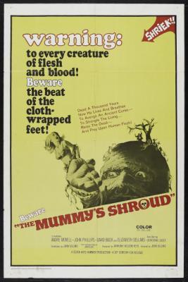 20080511064114-the-mummy-s-shroud.jpg