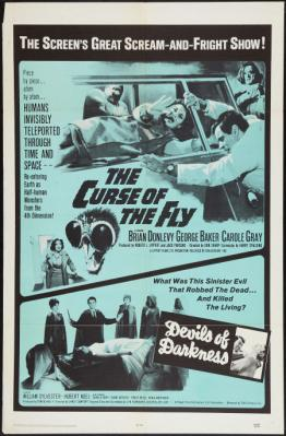 20120819004739-curse-of-the-fly.jpg