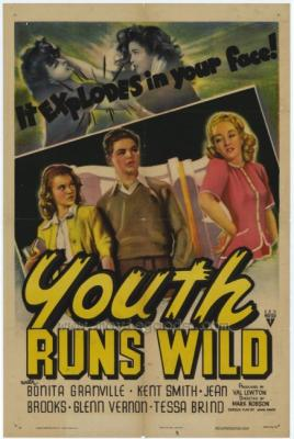 20070310221001-youth-runs-poster.jpg