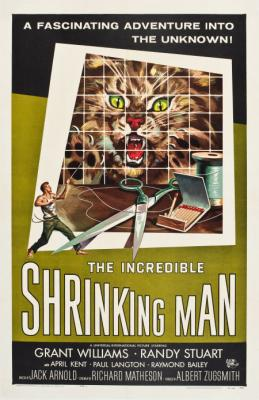 20120815174753-the-incredible-shrinking-man-2.jpg