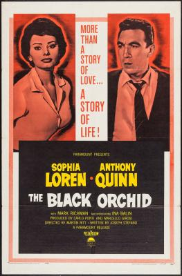 20131227192025-the-black-orchid.jpg