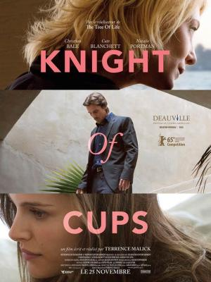20170114031854-knight-of-cups.jpg
