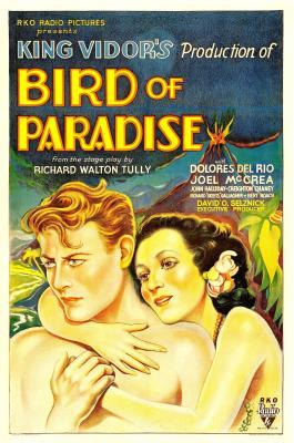 20190117225739-bird-of-paradise.jpg